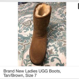 Tan Women's Ugg (Brand New)